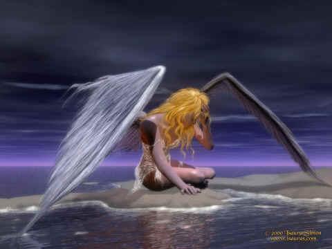 Fotografije anđela - Page 6 Fallen_angel